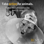 TakeActionForAnimalsSPCA2