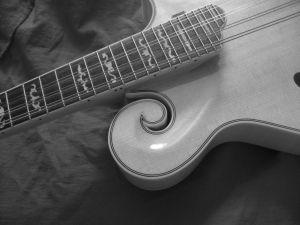 mandolin-835446-m