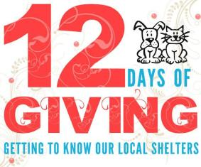 12DaysOfGiving