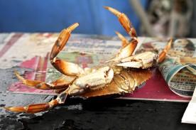 ChinatownCrab