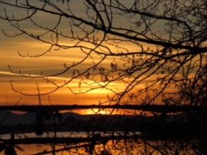 SunsetLast
