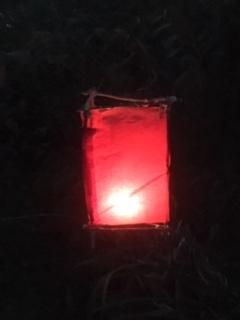 lantern20161