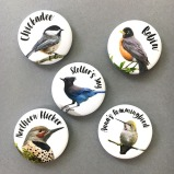 JuneHunter five bird magnets