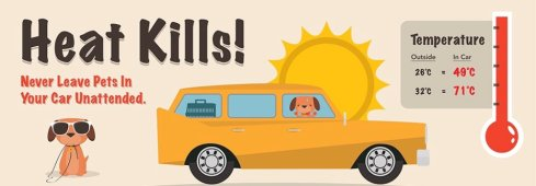 HeatKills!