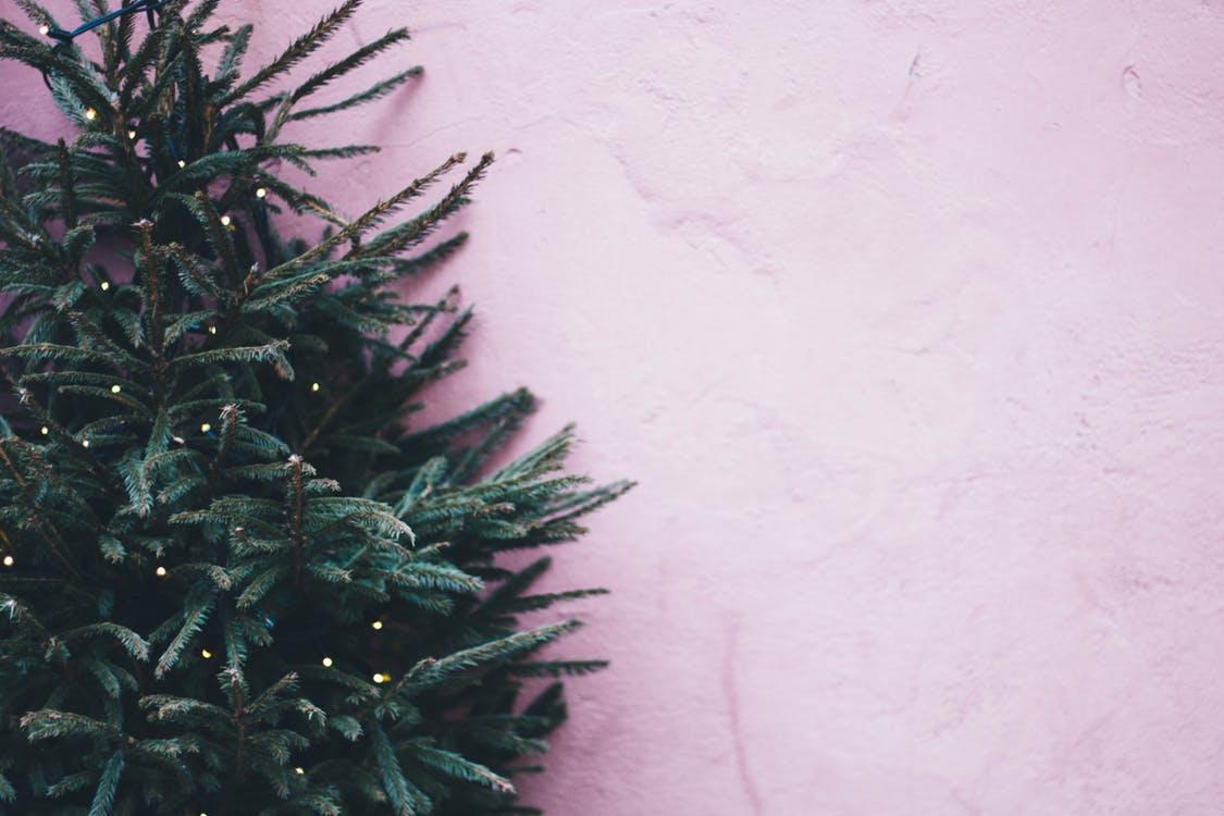 ChristmasTreePurpleWall