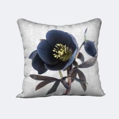 JuneHunterblack hellebore cushion w2