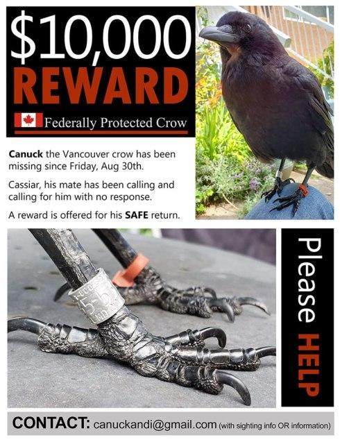 CanuckReward$10,000